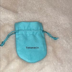 Tiffany Dust Bag